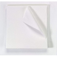 Pick Up In Store: Exam Drape Sheet 40 in x 60 in Tissue 2 Ply White 100/Ca CURBSIDE PICKUP ONLY