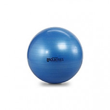 -Thera-Band Pro Series SCP Burst Resistant ExerciseBall Blue75cm